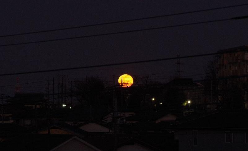 今年最初の満月(ウルフムーン)