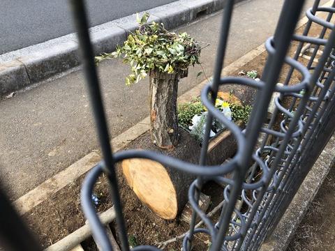打越公園花壇のバージョンアップ