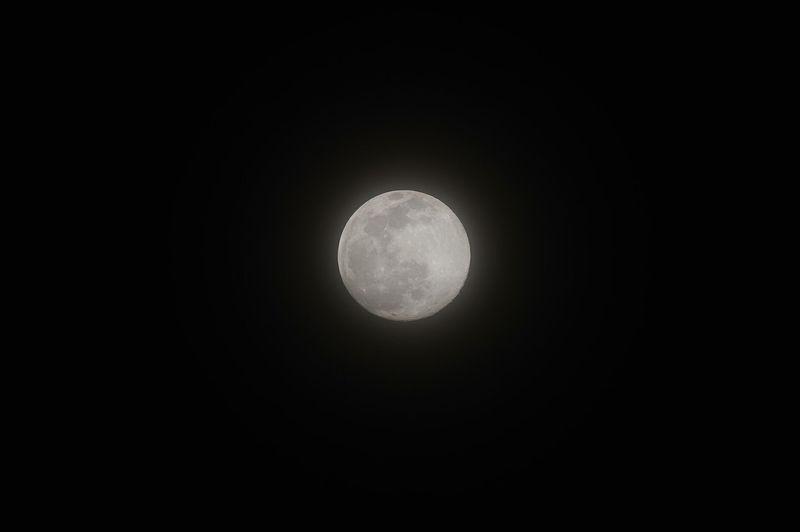 2月の十五夜、満月